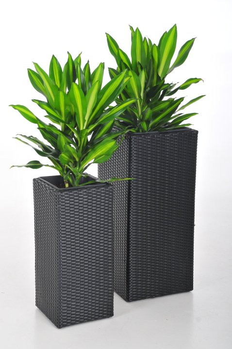 blumenk bel pflanzk bel pflanzgef e polyrattan block design schwarz 80 62cm ebay. Black Bedroom Furniture Sets. Home Design Ideas
