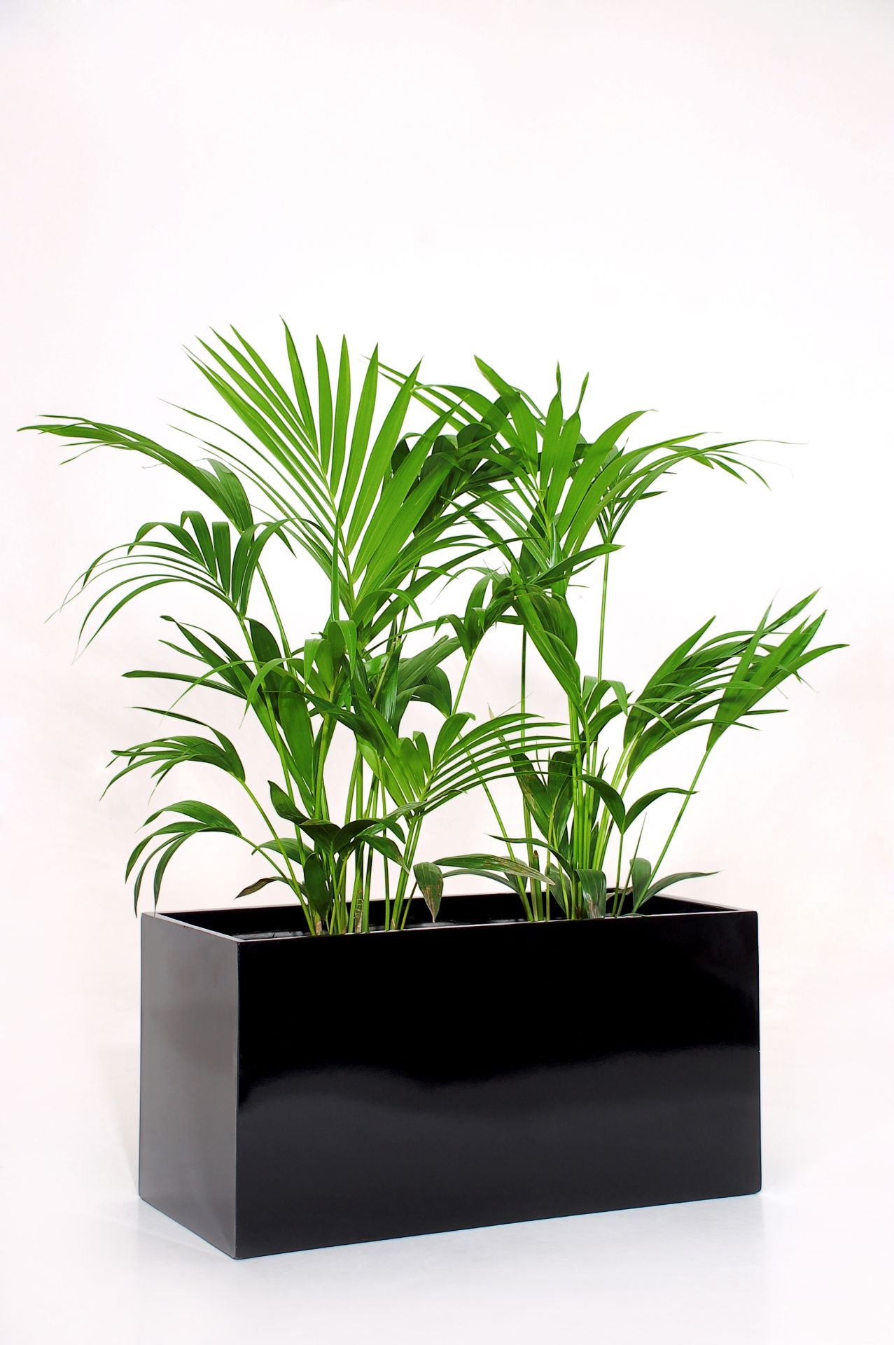 Blumenk bel pflanzk bel pflanzgef pflanztrog fiberglas for Fiberglas eigenschaften