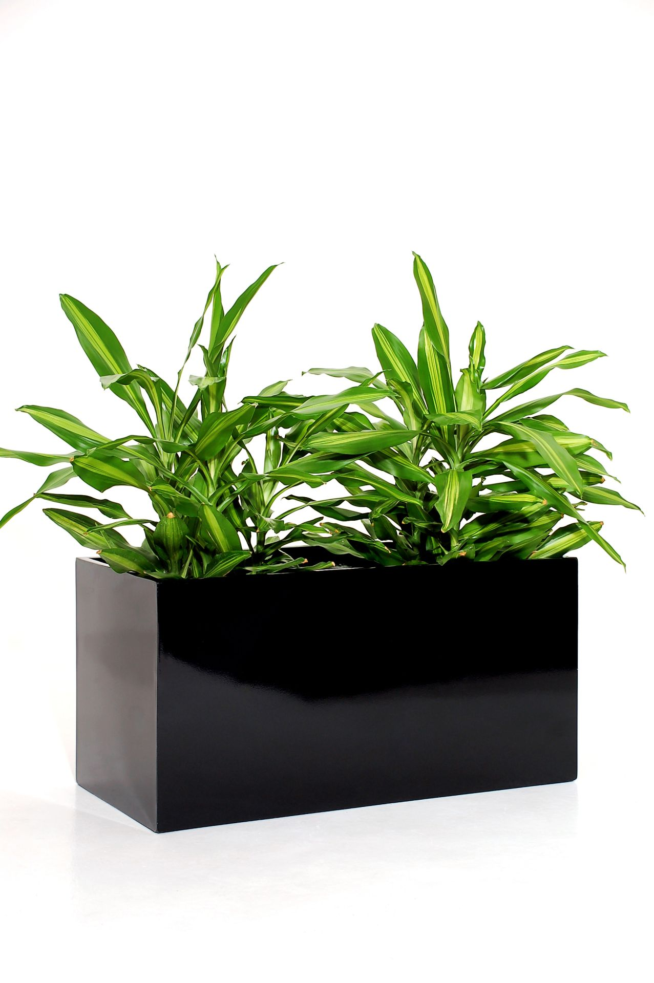 Blumenk bel pflanzk bel pflanzgef e pflanztrog fiberglas for Fiberglas eigenschaften