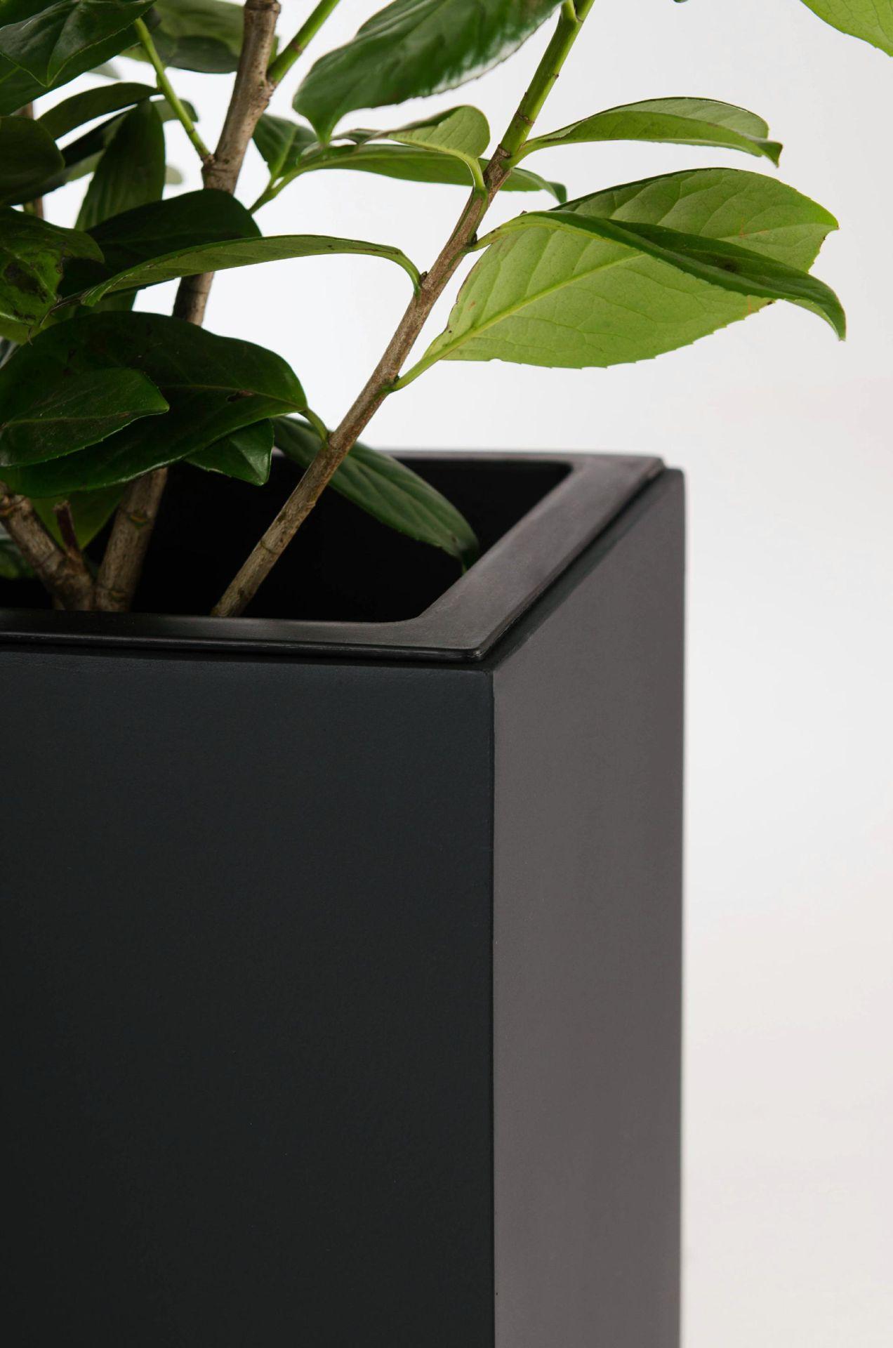 2er set pflanzk bel raumteiler fiberglas elemento 117 cm. Black Bedroom Furniture Sets. Home Design Ideas